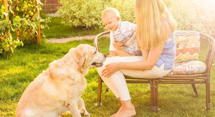 Mãe segurando filho no colo em um jardim junto com seu cachorrinho de estimação