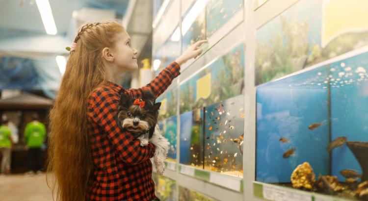 Menina em uma pt shop com setor de aquarismo admirando os peixes