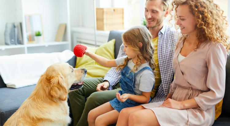 família brincando com cachorro