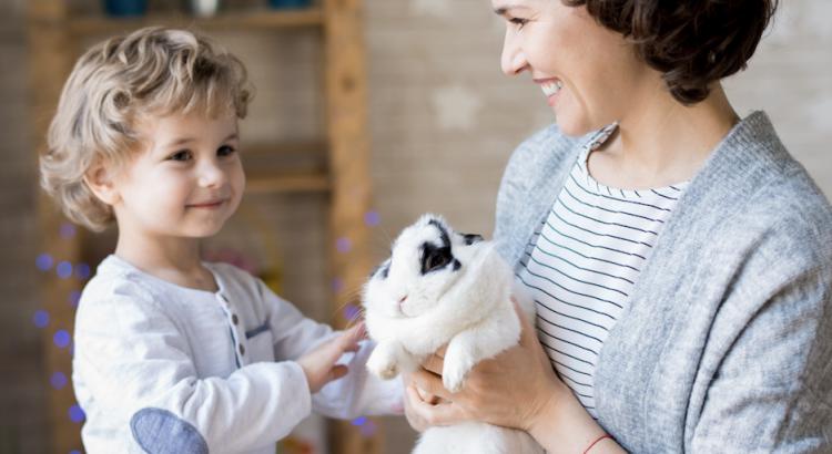 Duas pessoas fazendo carinho em seus coelhos de estimação