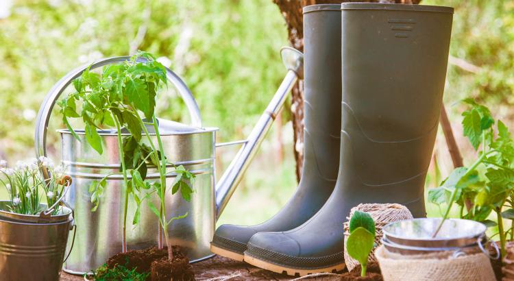 botas de jardinagem
